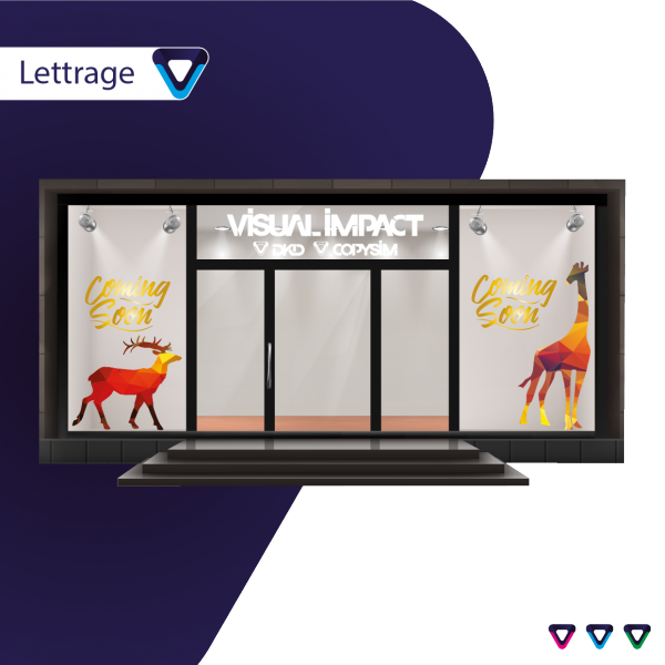 lettrage-vitrine-vitrophanie-habillage